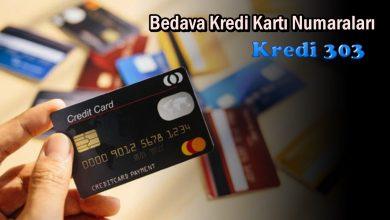 Bedava Kredi Kartı Numaraları