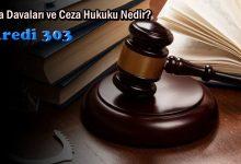 Ceza Davaları ve Ceza Hukuku Nedir?