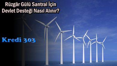 Rüzgâr Gülü Santral İçin Devlet Desteği Nasıl Alınır?