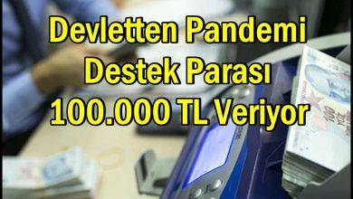 Devletten Pandemi Destek Parası 100.000 TL Veriyor